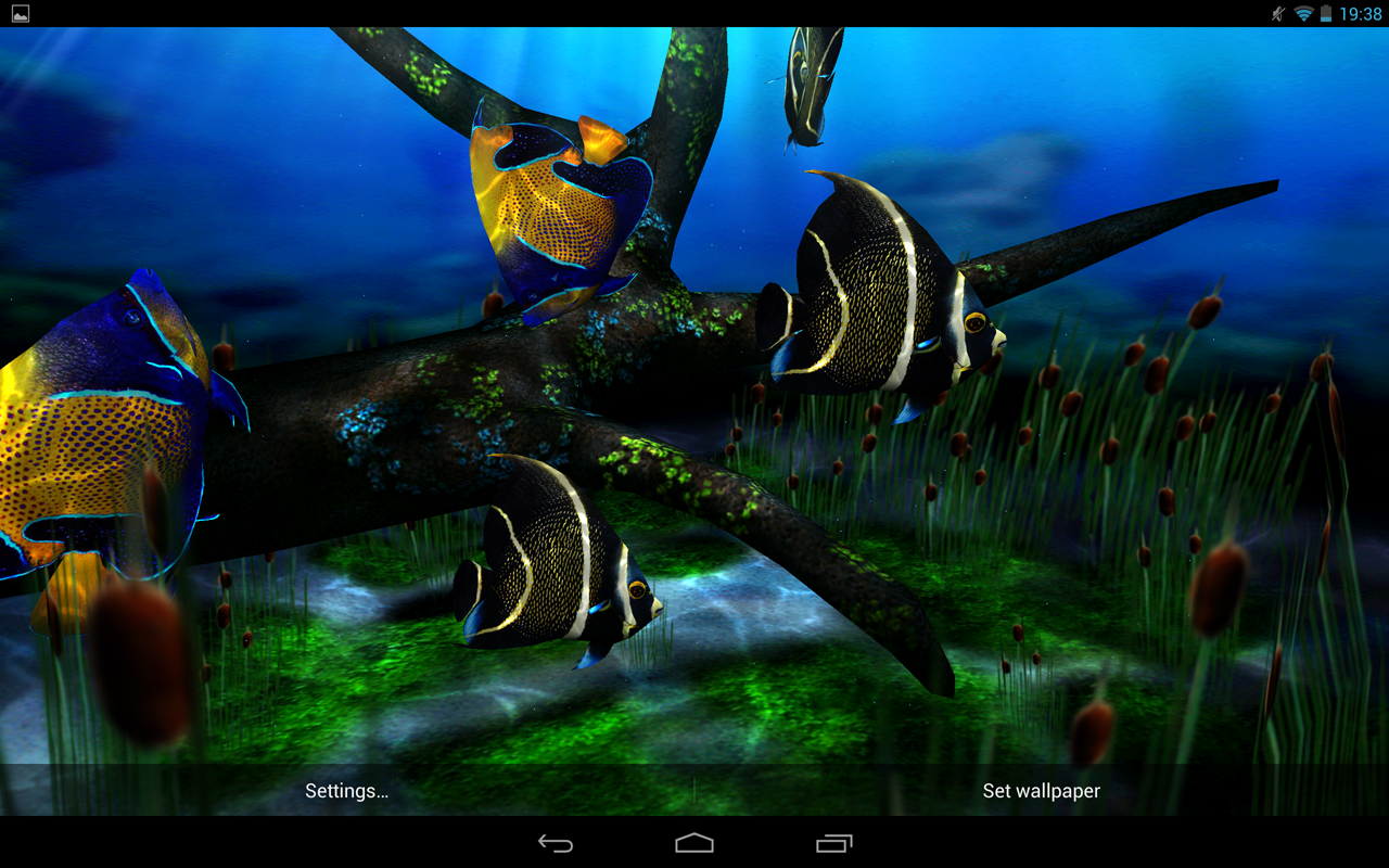 My 3D Fish II The App Store android Code Lads