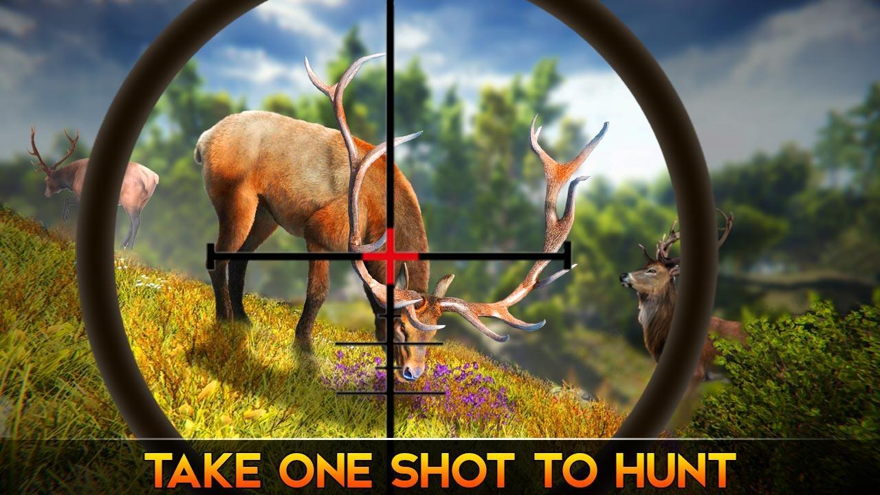 Jungle Deer Hunting