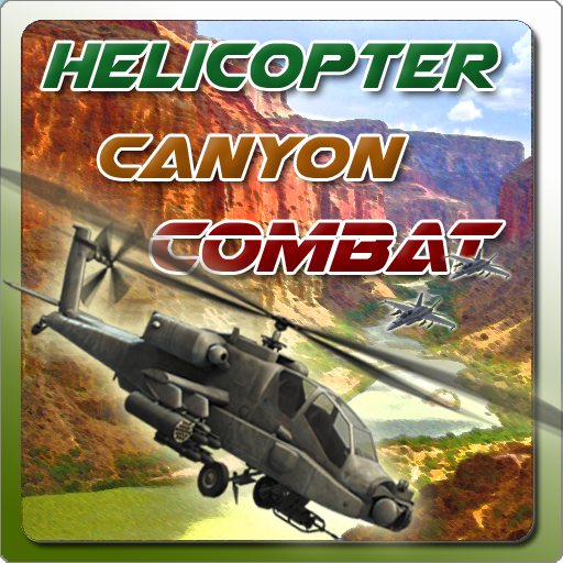 Helicopter Canyon Combat