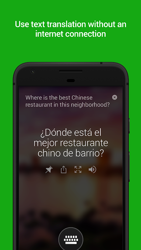 Microsoft Translator The App Store