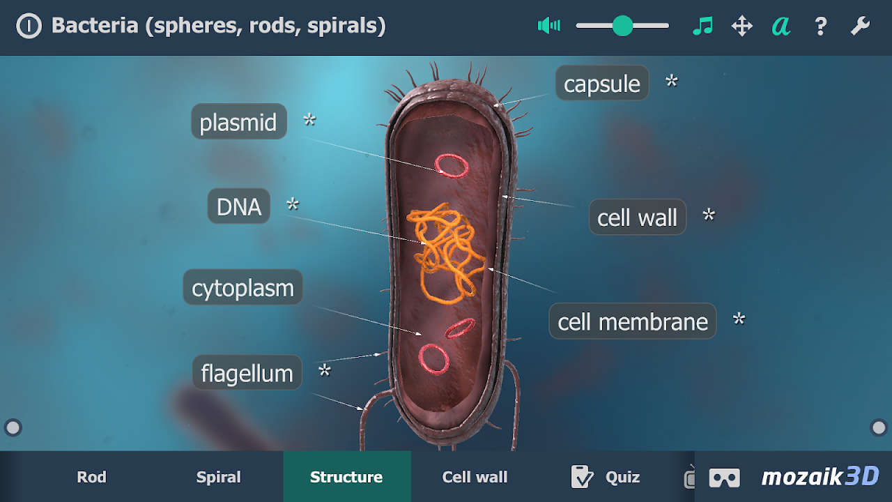 Screenshot Bacteria interactive educational VR 3D APK