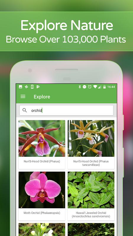 Screenshot PlantSnap - Identify Plants, Flowers, Trees & More APK