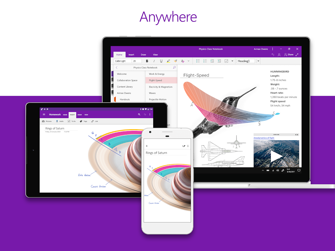 OneNote The App Store