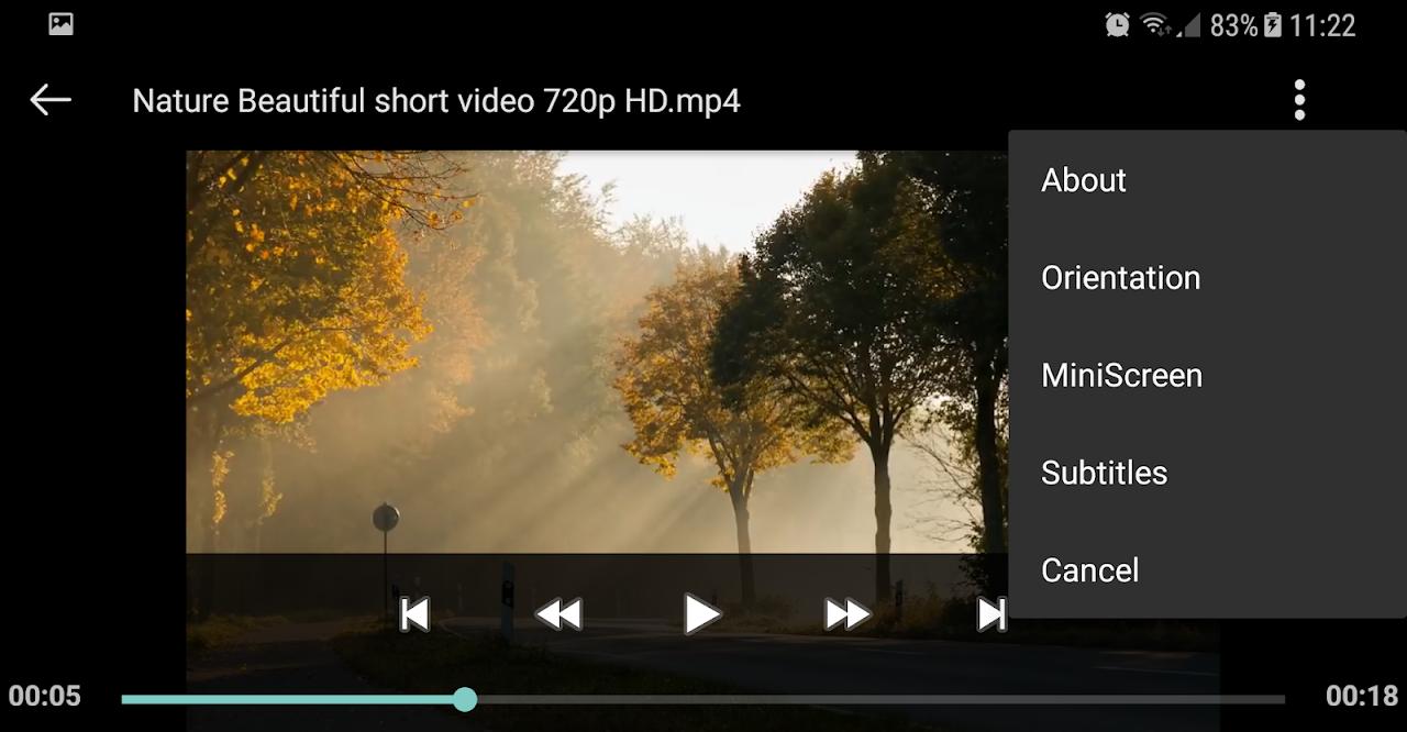 Screenshot Video Player APK