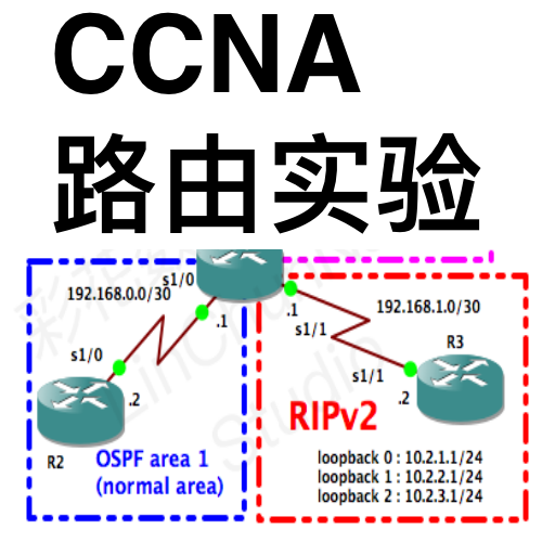 CCNA Labs Routing Lite