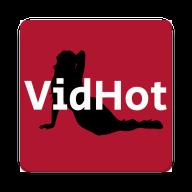 Vidhot