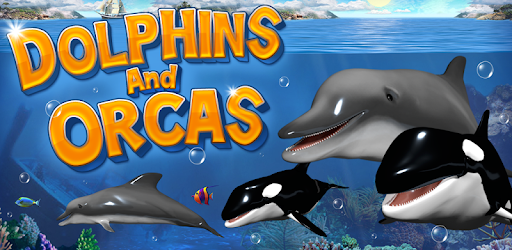 Dolphins and orcas wallpaper