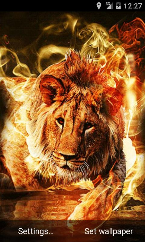 Fire Lion Live Wallpaper The App Store android Code Lads