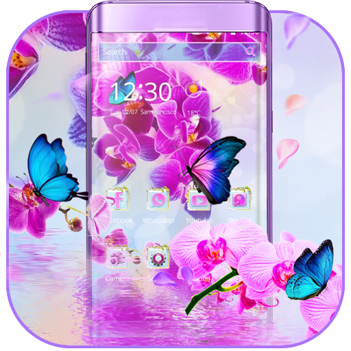 Pink Orchid 2018 New Theme