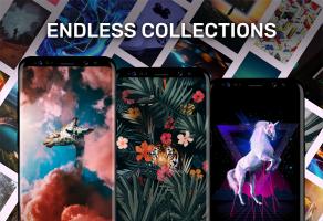 Walli - 4K, HD Wallpapers & Backgrounds Screen